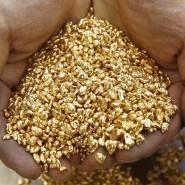 Добываем золото