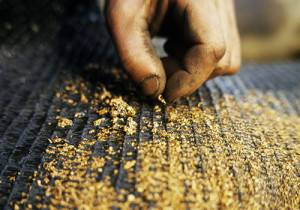 Лоток для обработки и добычи золота